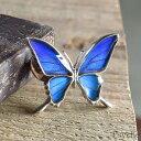(蝶 ブローチ)(オーダー品)(Psyche)本物の蝶の羽 シャープな羽の蝶 シルバー925 ピンブローチ 蝶々 バタフライ タミラスムラサキツバメ