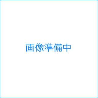 エバニュー(EVERNEW) ワンタッチテント2.4×4.8 EKA734
