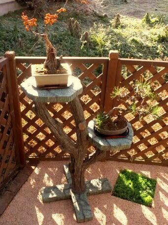 石組一本木風盆栽スタンド ガーデニング 盆栽 松 擬石と擬木のこだわりの組み合わせ★本物では出来ない希少な逸品!盆栽などをひきたてます。庭・ガーデニング・インテリア・園芸