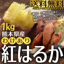 【わけあり】熊本県産 紅はるか1kg[サイズ不選別]【送料無料※北海道へは別途料金】【買うほどお得なおまけ付き!】【蜜芋】【さつまいも】【べにはるか】