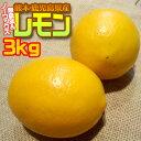 【無農薬&ノーワックス】熊本県産 わけありレモン3kg
