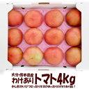 大分・熊本県産 わけありトマト4kg