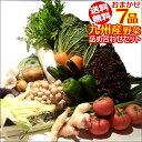 【7品+おまけ1品】おまかせ詰め合わせ九州野菜セット【送料無...