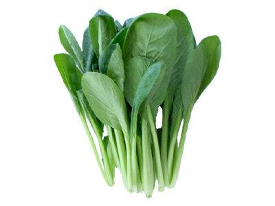 福岡県産 小松菜1袋