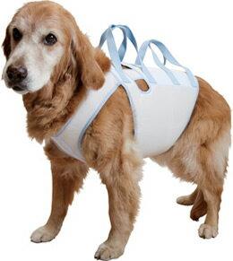 【大型犬用介護用品】【4シーズン】着たままねんねのハニカム胴着・ハニカムアシスタントバンド持ち手2ヶ所タイプ 起き上りや歩行補助をしてあげる持ち手付き胴着<介護用ハーネス>