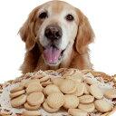 SorBitz(ソルビッツ)【犬のおやつ・食物アレルギー対応ビスケット】