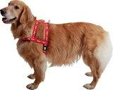 リボン胴輪<大型犬用>