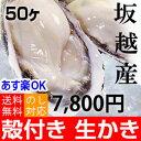 ★今一番美味しい時です★坂越産 殻付き牡蠣50ヶ [送料無料...