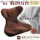 座椅子 姿勢矯正 美姿勢 骨盤矯正 腰痛 腰痛対策 プレゼン...
