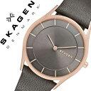 スカーゲン[ SKAGEN 腕時計 ]スカーゲン 時計[ SKAGEN 時計 ]スカーゲン 腕時計/ホルスト Holst メンズ/レディース/グレー SKW23...