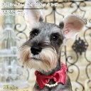 犬 シュシュネックレス【シェイク公式店】【シェリー・ネックレス】パール