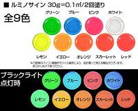 ルミノサイン30g×1(油性蛍光塗料)