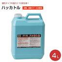 ハッカトル 4L (業務用 強力エフロ除去剤/ミキヤ)...