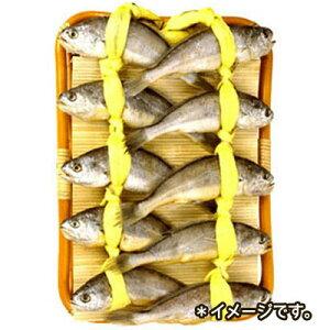 『海産物』石持(イシモチ)|クルビ(10匹)■韓国産 魚類 焼き魚 冷凍食材 韓国料理 韓国食品 マラソン ポイントアップ祭