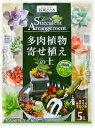 RoomClip商品情報 - 【花ごころ】多肉植物寄せ植えの土 5L 固まる土「ネルソル」付属 アレンジに