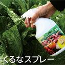 天然由来植物保護液*野菜の活力剤*くるなスプレー*900ml 6本セット【 パネフリ工業 】【出荷場所が別のため他商品と同梱不可】