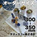 アクリルコレクションケース246組立式【オーダーサイズ】タテヨコ高さ合計300から350mm以内 納期14日前後