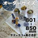 アクリルコレクションケース246組立式【オーダーサイズ】タテヨコ高さ合計801から850mm以内 壁掛け不可 納期14日前後