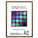 ポスターフレーム CT211カラーコレクションパネル A2 額縁ポスターフレーム594x420mm 額縁 ポスターフレーム【送料無料】