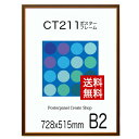 【送料無料】ポスターフレーム CT211カラーコレクションパネル B2 サイズポスターフレーム 額縁 515x728mm ポスターフレーム額縁