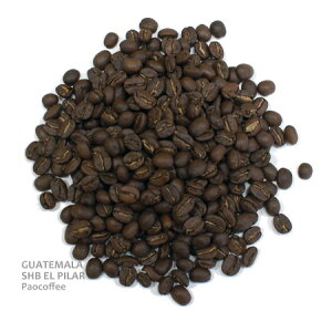 コーヒー グァテマラ エルピラール