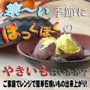 土鍋のシェア日本一!★レンジで焼き芋鍋【国産・萬古焼き】 電子レンジでチンするだけの焼き芋器 焼きいも