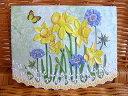 USA Carol Wilson キャロルウィルソンガーデンシリーズGarden Portfolios Daffodils