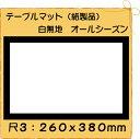 【クロネコDM便 不可×】紙製品 テーブルマット 尺3 白無地 No.0100 (100枚)