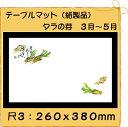 【クロネコDM便(メール便) 不可×】紙製品 テーブルマット 尺3 タラの芽No.284 (100枚