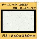 【クロネコDM便(メール便) 不可×】紙製品 テーブルマット 尺3 金閣 No.302 (100枚)