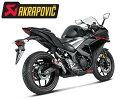 YAMAHA YZF-R25/R3/MT-25/MT-03用 AKRAPOVIC スリップオンライン MotoGP Style(GPスタイル)(S-Y2SO11-AHCSS)