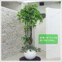 送料無料 人工観葉植物 光触媒 ブドウの樹 170cm ガーデニング 造花 室内インテリア 果樹木 フェイクグリーン インテリアグリーン 消臭 抗菌 151cm〜200cm 大型 大きい