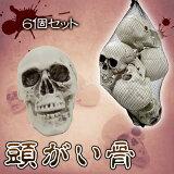 Uniton 頭蓋骨6個入り ハロウィン 雑貨 飾り 装飾品 怖い スカル ガイコツ ドクロ 骸骨 スケルトン ホラーディスプレイ 置物 オブジェ リアル
