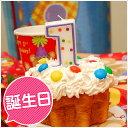 (あす楽12時!)[キャンドル]ドットポップナンバーキャンドル(1stバースデー)(1歳)(パーティー)(飾り付け)(デコレーション)(誕生日)(キャンドル)