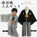 袴 セット ベビー キッズ ジュニア 男の子 紋付袴(はかま) 羽織付き3点セット (初節句 端午の