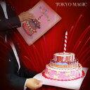 ●手品・マジック関連●ビック・ケーキ●ACS-1814