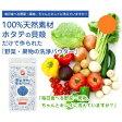 【即納】【あす楽対応】『野菜・果物の洗浄パウダー 100g』(メール便のみ送料無料 代引不可同梱不可)(割引サービス対象外)天然素材の食材洗浄剤 キッチン用品 野菜・果物の洗浄パウダー10P03Dec16