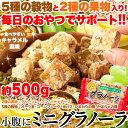 【2個セットで1kg】【大感謝価格 】5種の穀物と2種の果物入り!おやつでサポート!!小腹にミニグラノーラ 500g×2個セットで1kg
