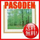 【送料無料】ナカバヤシ 木製写真額角型:再生木材 全紙判 (木地) フ-SW-179-N [フ-SW-179-N]