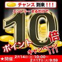Point10_20150214