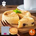 ショッピングケーキ (ホシフルーツ)大人のチーズケーキ(HFOC-12) / お菓子 スイーツ 内祝い 出産内祝い 結婚内祝い 快気祝 お返し ご挨拶 お礼 手土産 プレゼント (HFOC-12 )