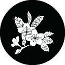 【送料無料】家紋シール 散り桜 丸型10cm or 四角10cm 2枚セット KS10-1636