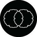 【送料無料】家紋シール 雪輪違い 丸型10cm or 四角10cm 2枚セット KS10-2095