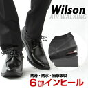 Wilson ウィルソン AIR WALKING ハイブリッ...