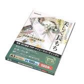 ラミネートフィルム 100枚入 A3 ナカバヤシ LPR-A3-E