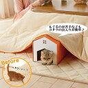 どこでもにゃんこトンネル2個組【トンネル ダンボール 爪とぎ スクラッチ 隠れ家 ハウス 猫 猫用品 猫用 ペットグッズ 国産 日本産】PEPPY(ペピイ)