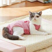 着心地いいおむつカバー 3色組 猫 服 手術後 国産 レッド ブルー ベージュ ペピイオリジナル 2017冬