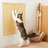 壁に貼れる爪とぎボード 3枚【爪とぎ スクラッチ キズ隠し 壁 猫 猫用品 猫用 ペットグッズ 国産 日本産】PEPPY(ペピイ)
