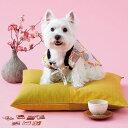 蓄熱ちゃんちゃんこ 4号 犬 猫 ウェア 服 コスプレ 秋 冬 あったか 寒さ対策 和 着せやすい かわいい ペット ペピイ PEPPY