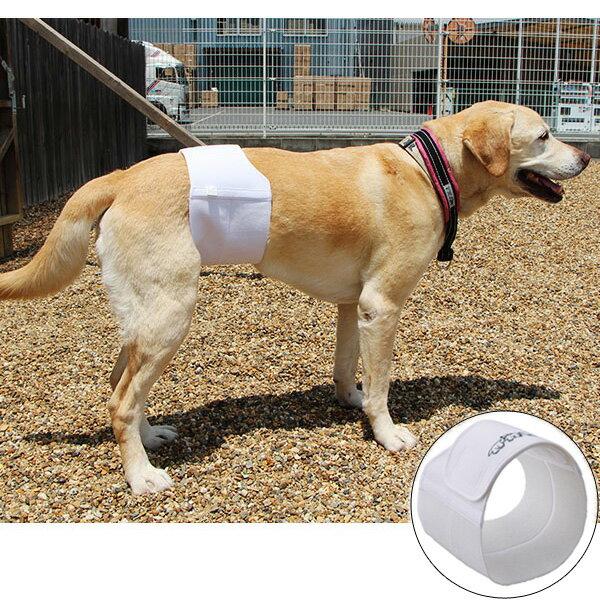 しっかりフィットマナーベルト犬犬用品犬用マナーベルトマナーバンド大型犬男の子用オスPEPPY(ペピイ